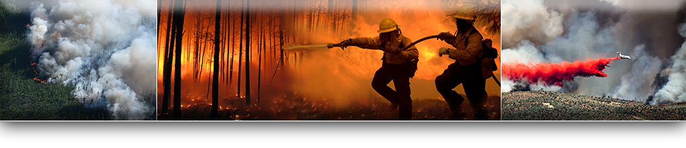 Firefighting Forest Fire